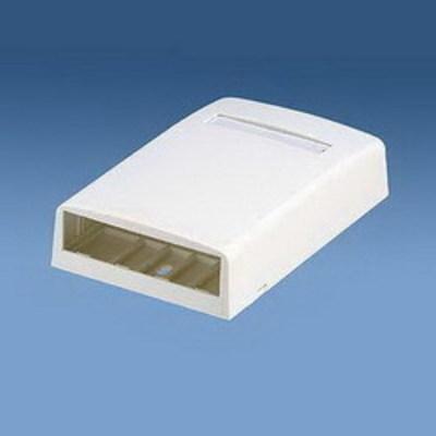 Panduit CBX2IW-AY Panduit CBX2IW-AY Mini-Com® Low Profile Surface Mount Box; ABS, Off-White, (2) Port