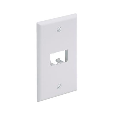 Panduit CFP2IW Panduit CFP2IW Mini-Com® 1-Gang Flat Faceplate; (2) UTP, STP, Fiber-Optic, A/V Port, ABS, Off White